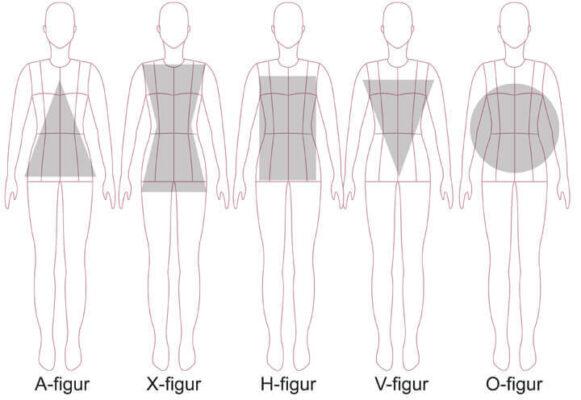 kropstyper til design